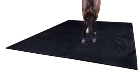 Matting Flooring by Image Gallery Stall Mats