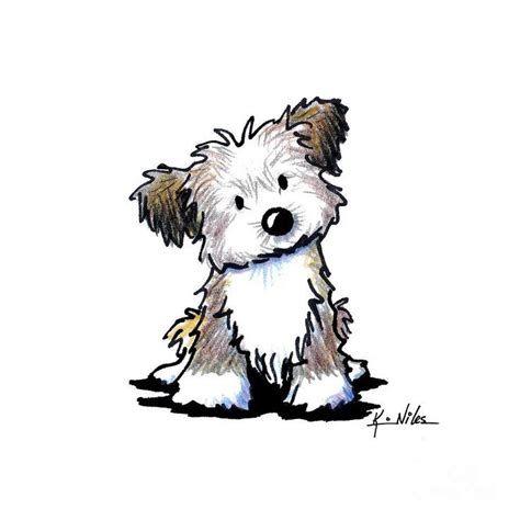 havanese clothes 17 best images about drawing ideas on baby bears and panda bears