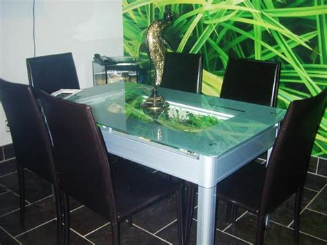 35 aquariums and custom tropical fish tanks for