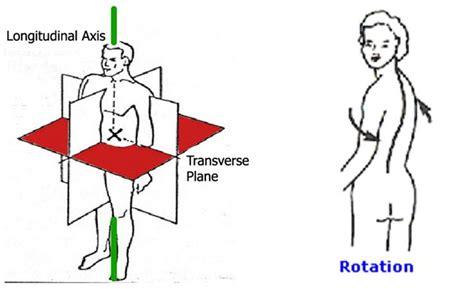 que es el eje espacial para un corte de cabello gratis ensayos ejes de rotaci 243 n y direcciones espaciales primarias del