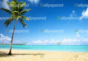 Beach Scene Wall Mural beach wall mural beach photographic wallpaper for walls