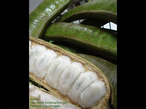 paternas de el salvador la fruta mas rica la paterna honduras pinterest