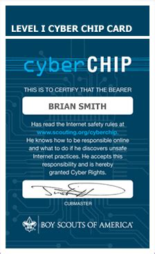 Bsa Blue Card Template by Cyber Chip Meritbadgedotorg