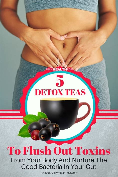 Detox Your Gut by 5 Detox Teas To Flush Out Toxins From Your And
