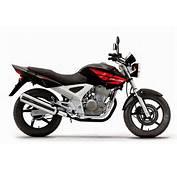 Honda Bikes Shine 150cc Price  Riding Bike