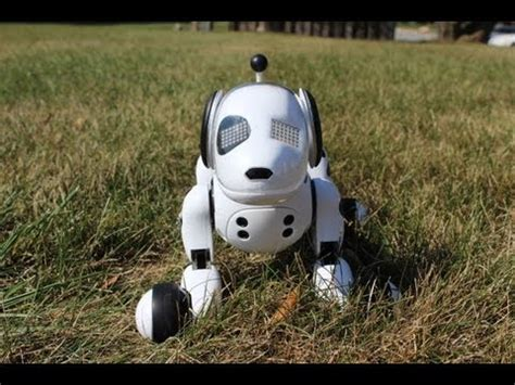 zoomer puppy reviews zoomer the interactive robotic review how to save money and do it yourself