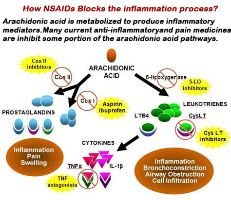 best medicine for inflammation 17 best images about nsaids on allergies