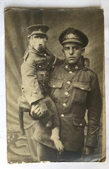 world war  heroics  jackie  baboon caleb  linda pirtle