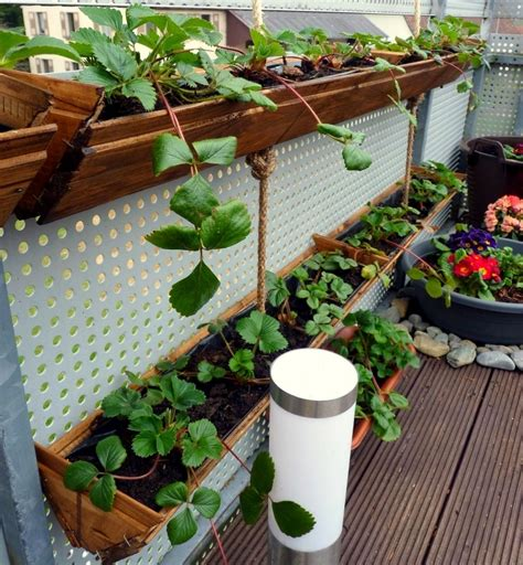 Strawberry Garden Ideas Container Gardening Diy Strawberry Planter Easy And