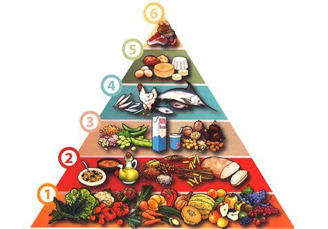 inquinamento alimentare cibo e salute la piramide alimentare della regione toscana