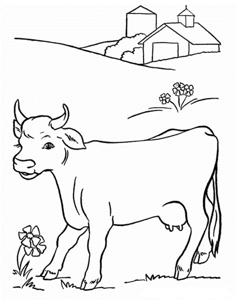 coloring pages of cow and calf kids coloring pages coloring pages activities worksheets
