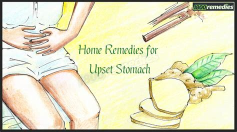 home remedies for upset stomach home remedies for upset stomach