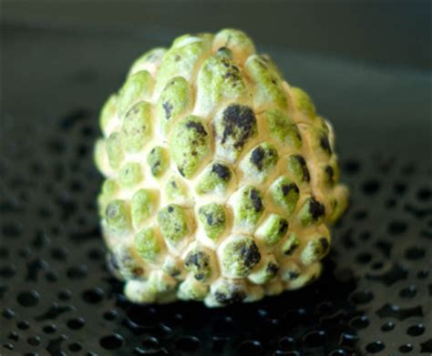 3 fruits with seeds on outside the many fruits of southeast asia bootsnall