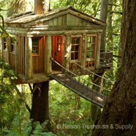 sherwin williams paint store issaquah wa 17 best images about treehouses on