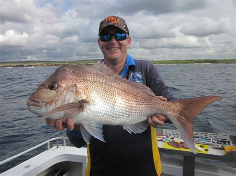 charter boat fishing hshire all at sea fishing charters sydney