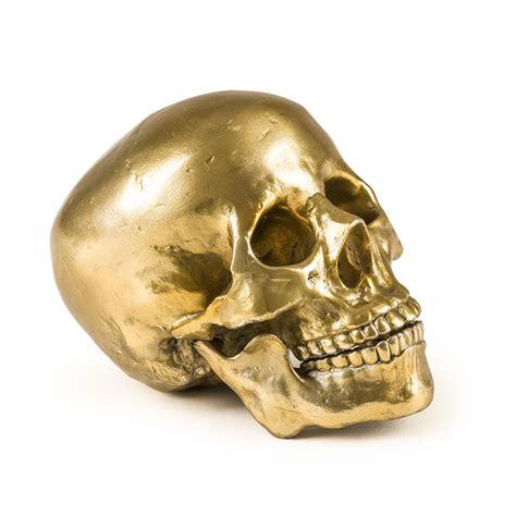 "Wunderkammer ""Culture Skulture"" Human Skull Panik Design"