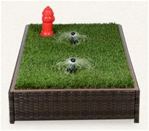 how to to use potty patch potty box on grass grass and dogs