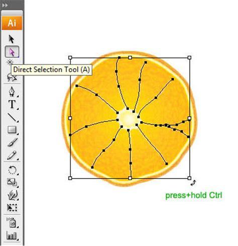 illustrator tutorial orange illustrator tutorial realistic orange