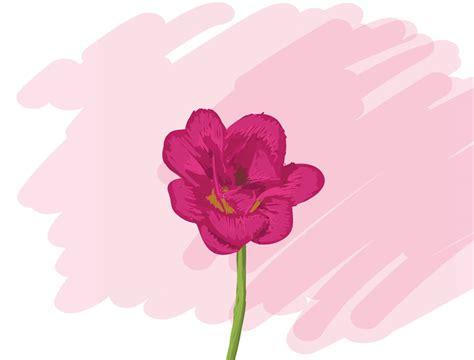 mundo maravilloso la flor cuento la flor m 225 s bonita del mundo bosque de fantas 237 as