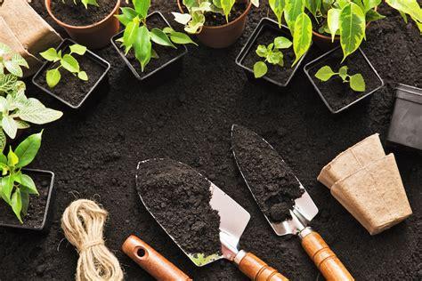 Starting A Vegetable Garden For Beginners Backyard Riches Starter Vegetable Gardens