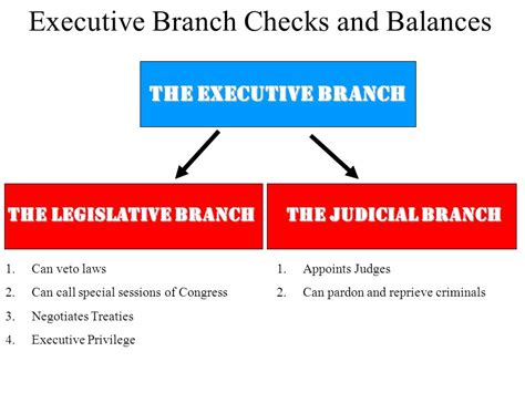 Executive Background Check Everything You Wanted To About The Executive Branch Ppt