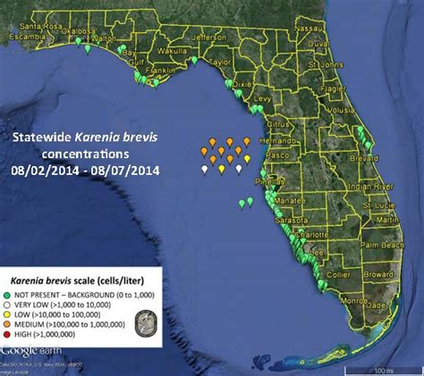 Toxic Red Tide Algae Bloom Approaches Florida Coast