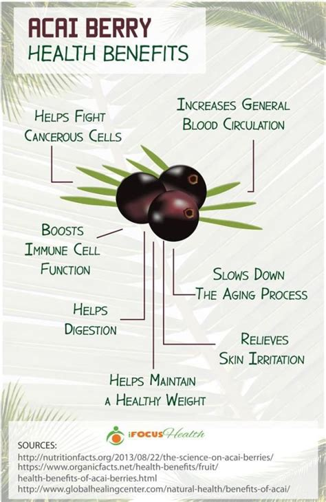 Https Bengreenfieldfitness Article Lifestyle Articles Best Home Detox Tips by 25 Best Ideas About Acai Berry Diet On Acai