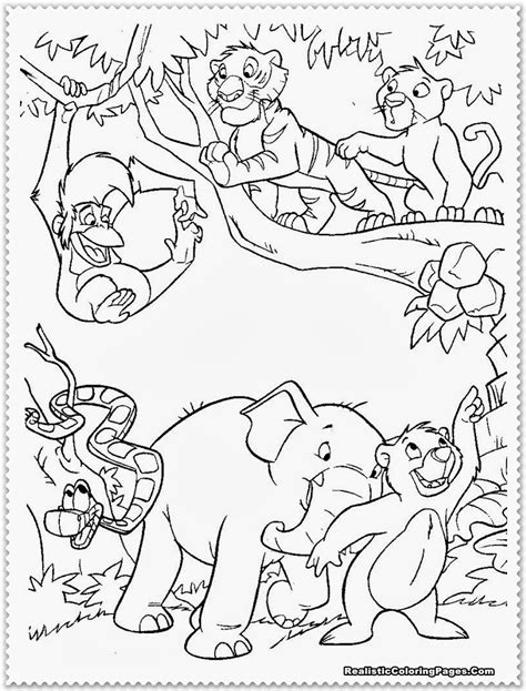 free coloring pages baby jungle animals jungle animals coloring coloring pages