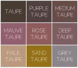 what is taupe color best 25 taupe color ideas on taupe color