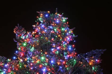top of tree wont light on led tree how to green your tree