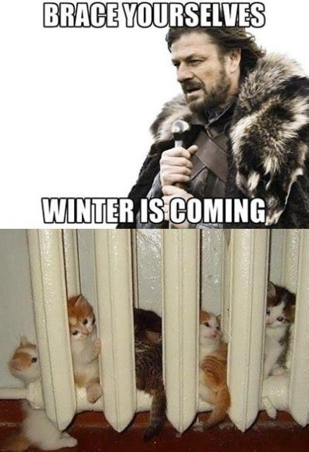 winter is coming meme winter is coming jokes memes pictures