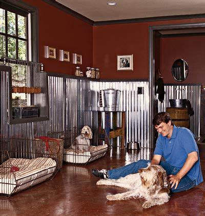dog rooms in houses 17 best ideas about dog rooms on pinterest pet rooms puppy room and wash room