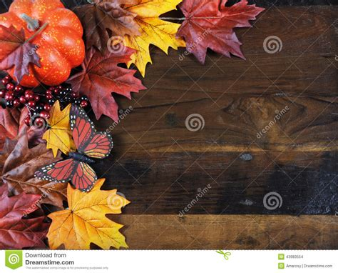 autumn fall background  copy space stock photo image