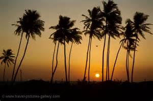 pictures of india goa 0012 a colva sunset