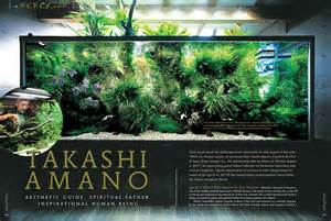 aquascape takashi amano aquascaping inspiration tips and tricks aquascaping