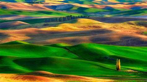 colorful hill colorful rolling in palouse washington hd wallpaper