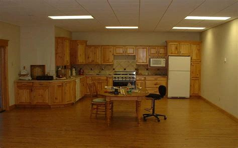Basement Kitchen Design Lighting Ideas Feel The Home