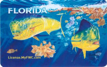 is a florida boating license valid in other states get outdoorsy with the new guy harvey hard card license
