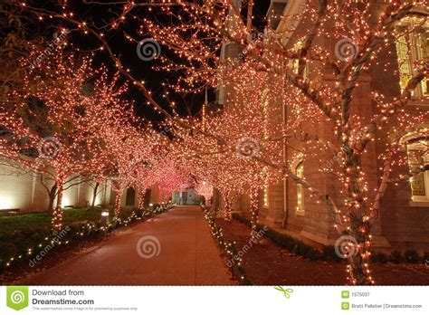 christmas lights in the night stock image image 1575037