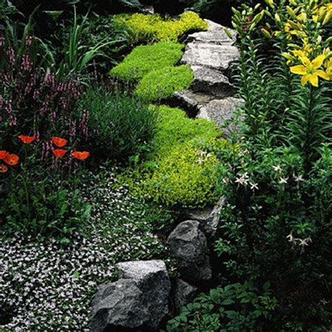 Rock Cottage Gardens 17 Best Ideas About Rock Wall Gardens On Pinterest Rock Garden Plants Wall Gardens And