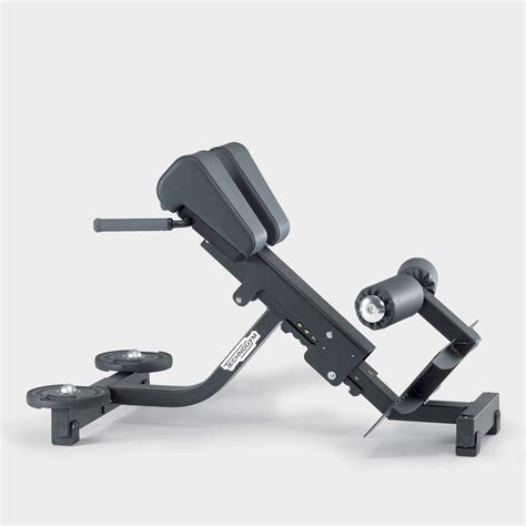 lower back bench pure strength lower back exercise bench