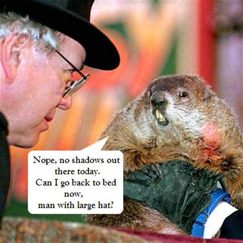 groundhog day budget is on it s way hopefully budget friendly