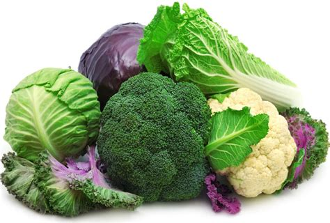 alimenti utili alla prostata alimenti per la prostata i cibi consigliati e quelli da