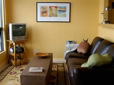 Ideas For Small Living Rooms by Great Paint Ideas For Small Living Rooms Cagedesigngroup
