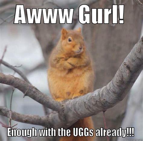 Awww Meme - unimpressed squirrel quickmeme