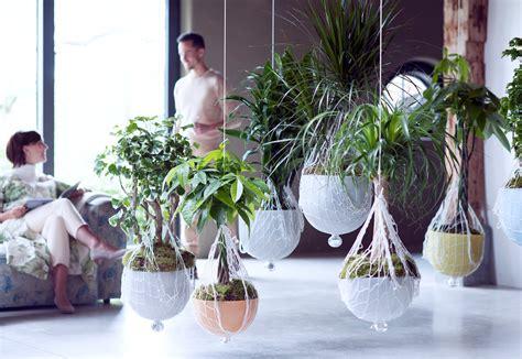 Plantes D Interieur Decoration les plantes d int 233 rieur s invitent dans notre d 233 coration