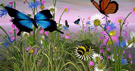 fiori colori fiori farfalle e colori emozioni