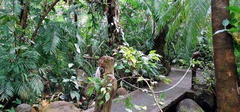 botanischer garten erlangen aromagarten und botanischer garten erlangen