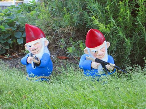 combat garden gnomes interesting combat garden gnomes for your garden