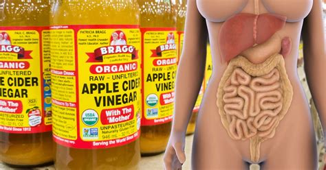 13 Foods That Detox Your 13 foods that will help cleanse your colon and keep you